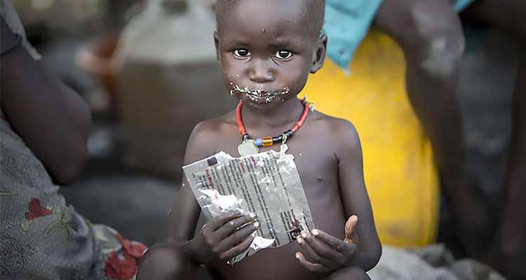 FAO homenageia os que melhor combatem a fome - Folha 8