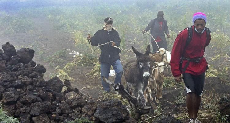 Ajuda solidária à população da Ilha do Fogo - Folha 8