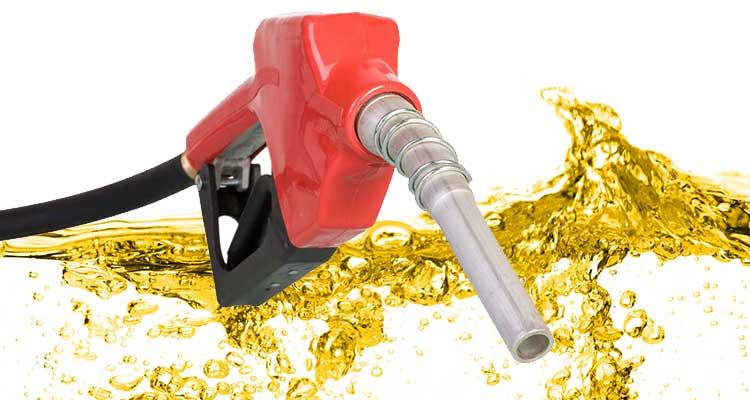 Já agora, venha daí novo aumento dos combustíveis - Folha 8