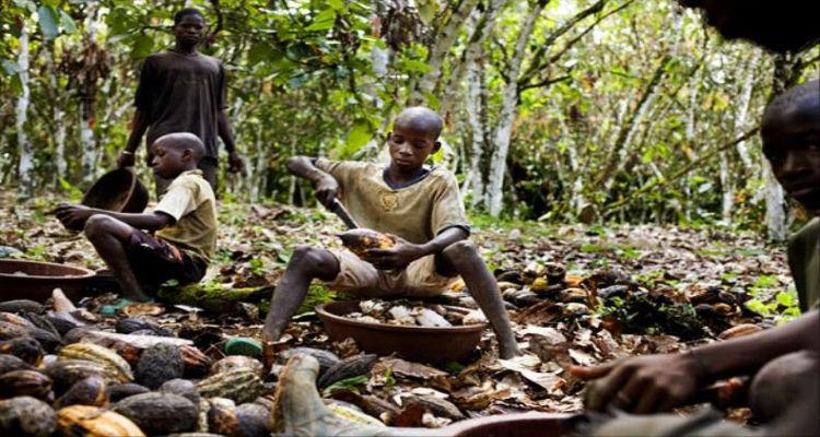trabalho-infantil-angola