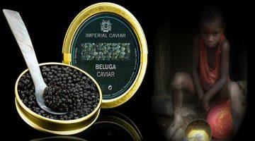caviar-ovos-angola