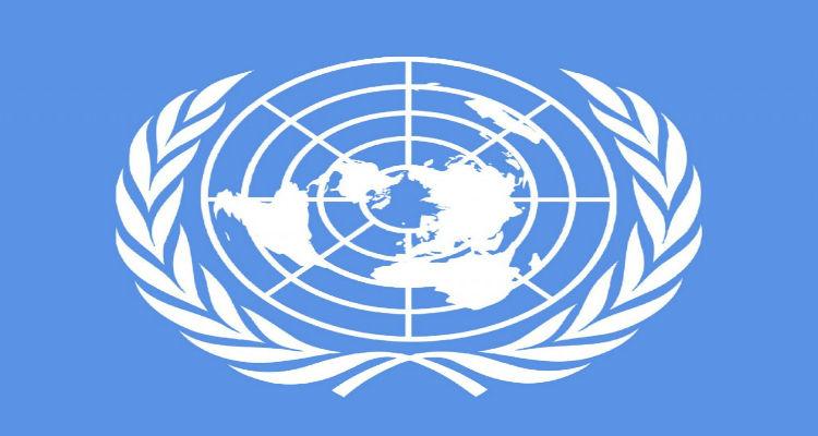 ONU carece de reforma democrática