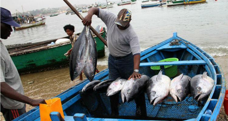 Estaleiros portugueses abastecem Angola - Folha 8