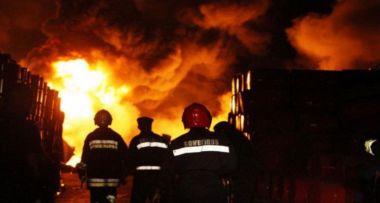 Mais de mil mortos devido a incêndios desde o início do ano
