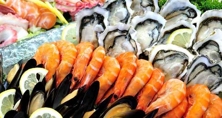 Governo exportou 41 mil toneladas de mariscos - Folha 8