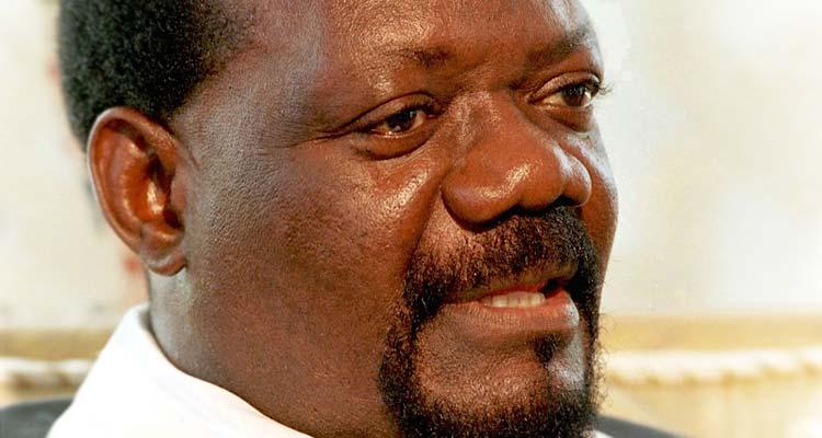 Savimbi é angolano? - Folha 8
