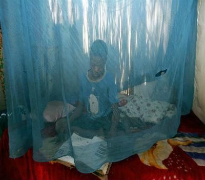 O Governo angolano vai distribuir a partir de Maio até 2018 mais de dez milhões de redes mosquiteiras tratadas com insecticida de longa duração na sua luta de combate à malária, a principal causa de morte no país.